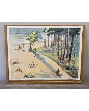 Vieille carte scolaire Rossignol 17- Terrain argileux /18-Terrain sableux