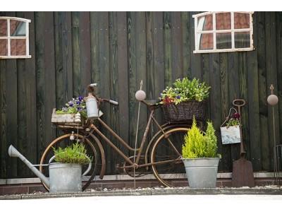 Comment faire mon jardin broc' ?